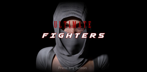 Pinclude Studios - Ultimate Fighters 2019 - Completed