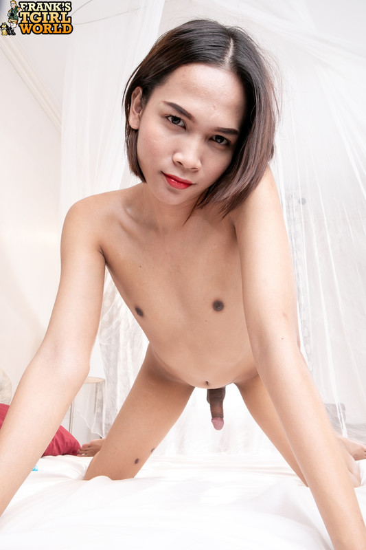 Ticha Satisfies Her Ass And Cock! (19 September 2019)
