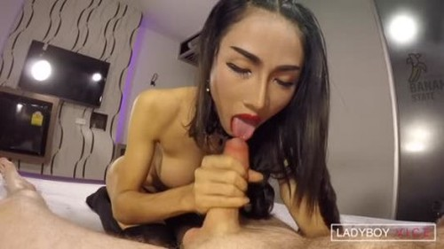 LadyboyVice Enjoy - Topping And Creampie - Shemale Porn