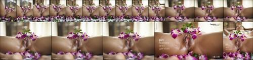 [Hegre-Art] Pin - Flowers And Genitals - idols